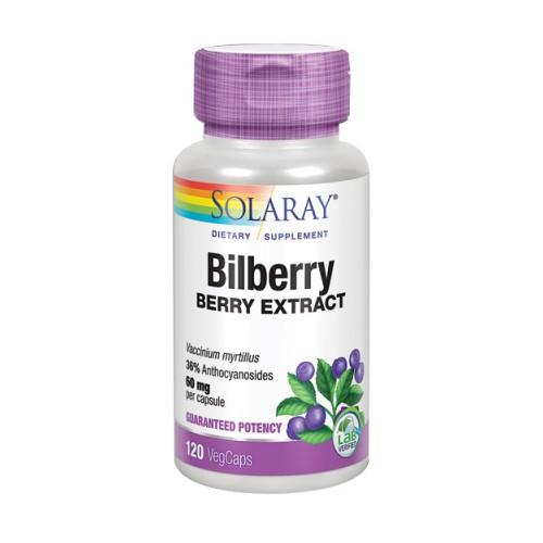 Bilberry Berry Extract 120 Veg Caps by Solaray