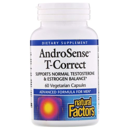 Natural Factors - AndroSense T-Correct 60 Veg Caps by Natural Factors